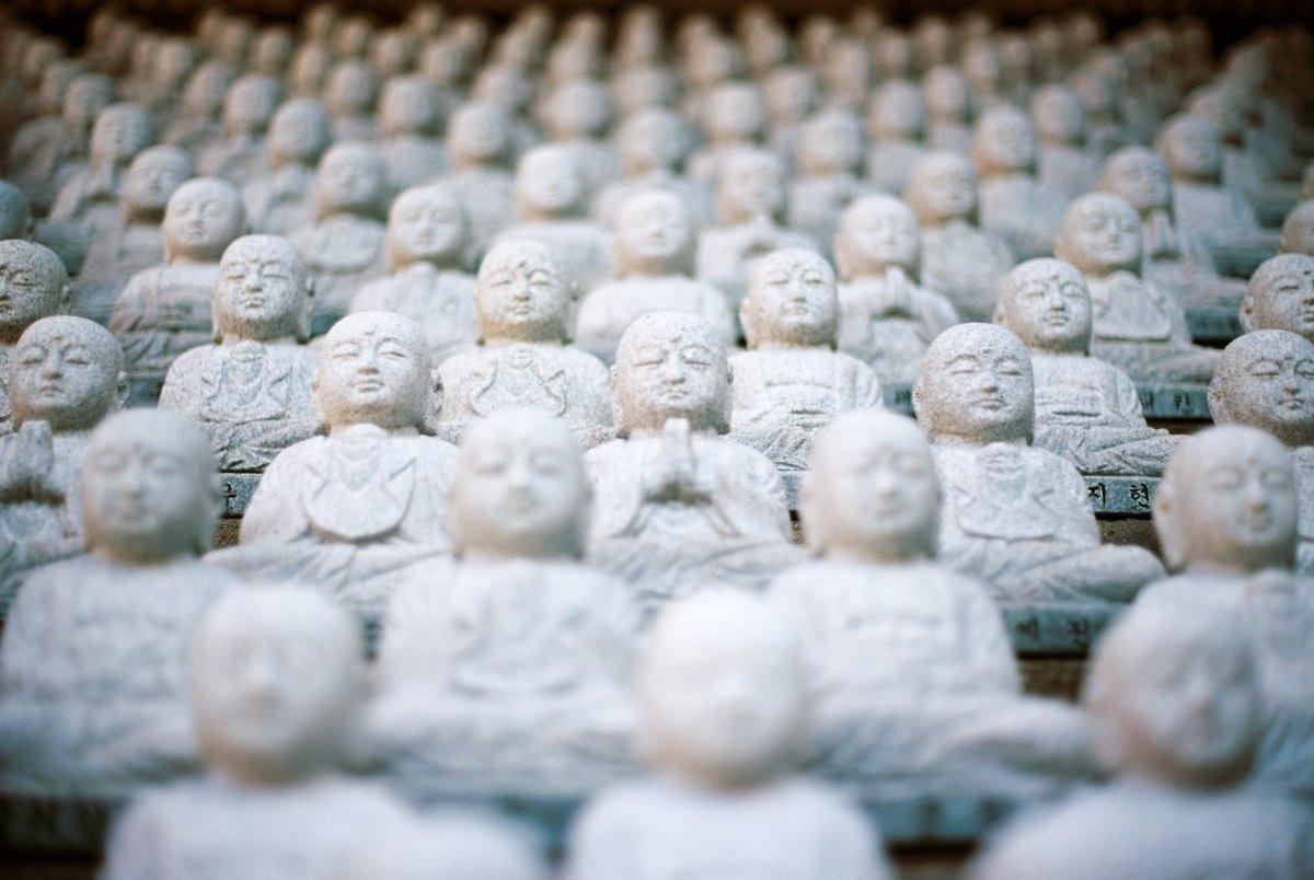 Méditation Vipassana : 110 heures de méditation en 10jours
